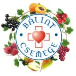 logo_balintcsemege